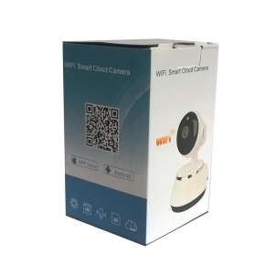 wifi alaram camera1